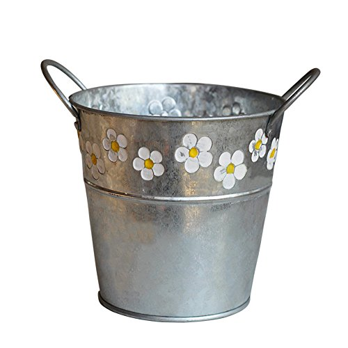 Luerme Iron Flower Pot Arrangement American Countryside Style Flowerpot Ornament Balcony Retro Flower Container Display Holder Dinning Room Cafe Decorations (Style D)