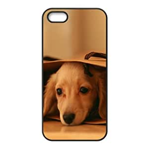 Case for IPhone 5,5S, Miniature Dachshund (Mini Dog) Case for IPhone 5,5S, Naza Black