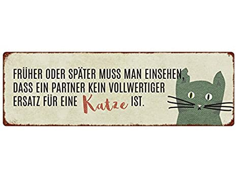 METALLSCHILD Türschild NICHT ALLE ENGEL HABEN FLÜGEL Katze Tierisch Geschenk