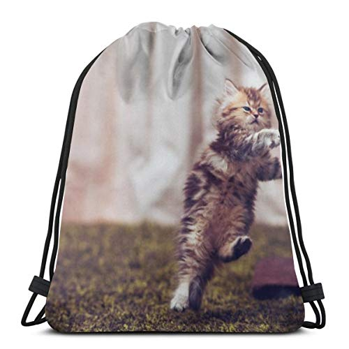 Kitty furry run jump room posture Drawstring Backpack Bag Lightweight Gym Travel Yoga Casual Sackpack Shoulder bag for Hiking Swimming beach