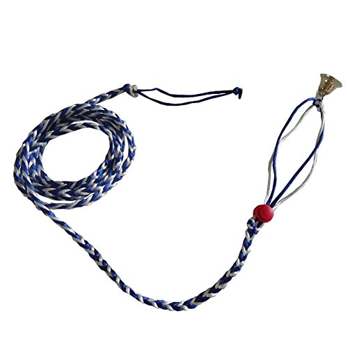 Red Flying Squirrel (Wildgirl Pets Training Rope Rat Squirrel Hamster Flexible Tie Lead Leash Collar Harness (Blue and white))
