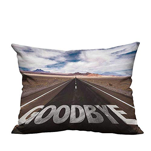YouXianHome Zippered Pillow Covers Party Goodbye Written on Asphalt Road Highway City Urban Words Brown Blue Decorative Couch(Double-Sided Printing) 19.5x60 inch