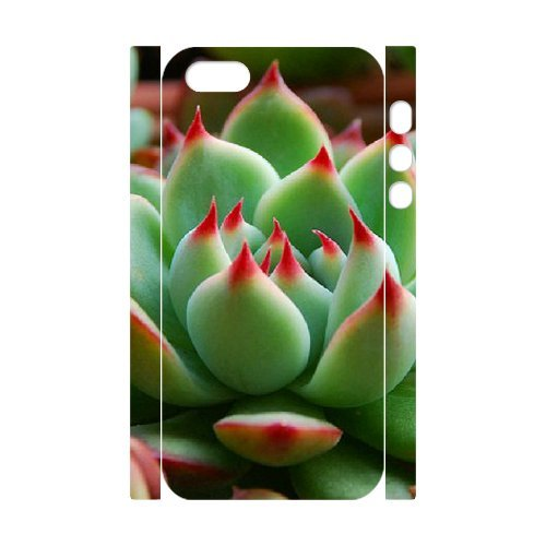 SYYCH Phone case Of Succulent Plants Cover Case For iPhone 5,5S