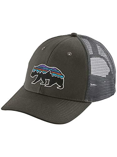 Patagonia Fitz Roy Bear Trucker Mid Crown Adjustable Hat, Forge Grey (Forge Grey, OS) (Patagonia Fitz Roy Trout Trucker Hat Forge Grey)
