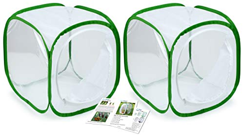 2-Pack Insect and Butterfly Habitat Cage Terrarium Pop-up 12 X 12 X 12 Inches