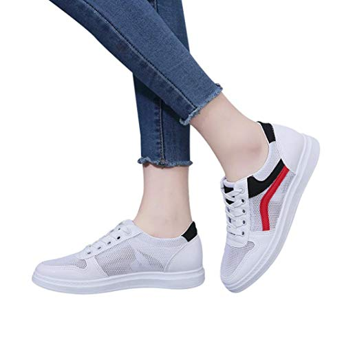 AgrinTol Women Hollow White Mesh Shoes,Clearance Student for sale  Delivered anywhere in USA
