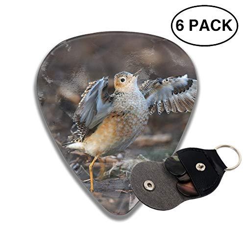 Guitar Picks Animal Sandpiper Birds Waders Celluloid Plectrum Thin Medium Heavy Bass 3D Printed Variety Pick Mini Music Gift Grip ()