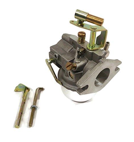 carburetor choke lever - 9