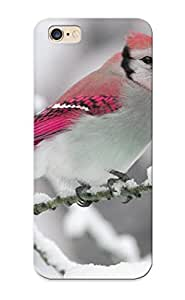1e1237e4622 Walkintherain Nature Winter Bird Snow Branch Feeling Iphone 6 Plus On Your Style Birthday Gift Cover Case
