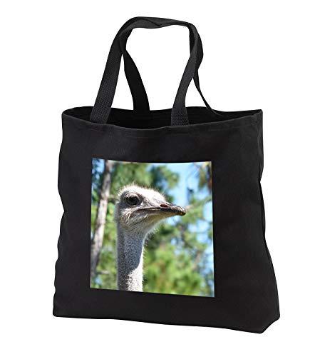 Susans Zoo Crew Animal - Ostrich head against pine trees - Tote Bags - Black Tote Bag JUMBO 20w x 15h x 5d (tb_294887_3)