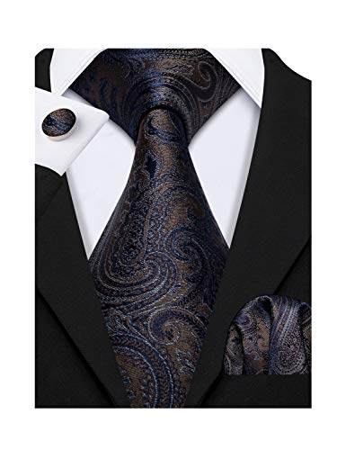 - Barry.Wang Men Paisley Necktie Classic Blue Flower with Pocket Square Tie Clip Set Brown Color