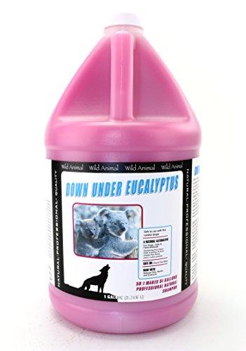 Wild Animal Down Under Eucalyptus 50:1 Shampoo Gallon