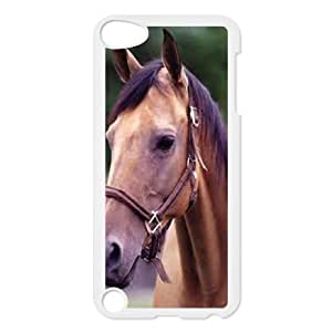Beautiful Designed With Horse Theme Phone Shell For iPod Touch 5