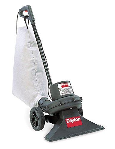 Dayton Vacuum, Indoor/Outdoor (Best Shop-vac Upright Vacuums)