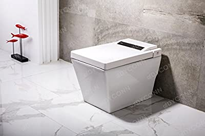 Dyconn Faucet Aqua Tankless All In One Combo Bidet & Smart Toilet