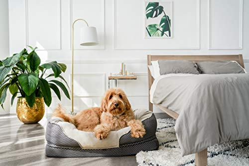 Buy material for dog bed