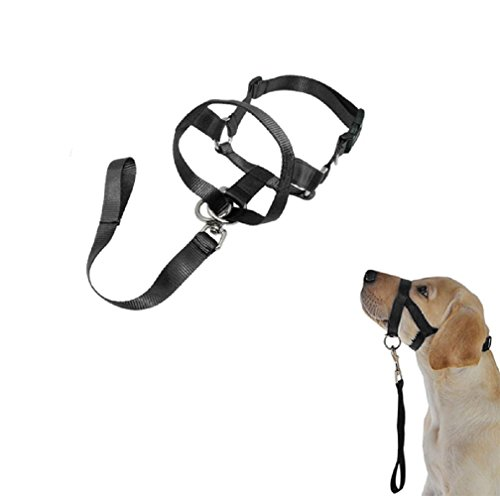 ASOCEA Dog Gentle Leader Head Collar Adjustable Behavior Training Anti Bite Training Leash ( 4.7-15inch)