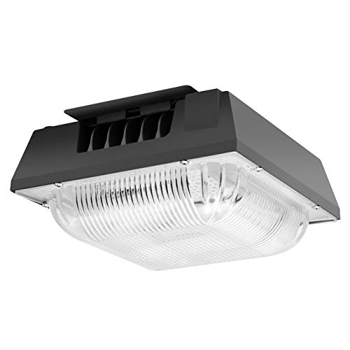 Led Outdoor Canopy Lighting