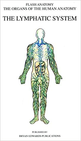 The Lymphatic System Organs Of The Human Anatomy Systems Of Human
