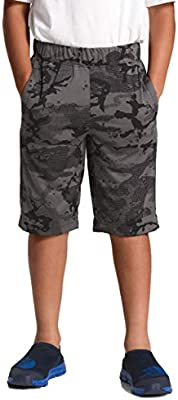 6523e3e12 The North Face Kids Boy's Mak 2.0 Shorts (Little Kids/Big Kids) TNF ...