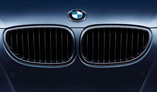 BMW 51712155446 M Performance Gloss Black Kidney Grille for E60/E61 5 ()
