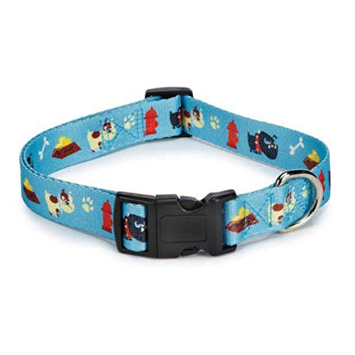 Casual Canine Tough Dog Collar