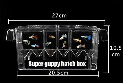 4 habitación Hatch Box Suspender Acuario acrílico Guppy bebé peces pequeños – separación cría caja AUTO