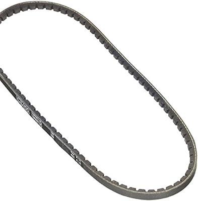 Dayco 10A0813C Drive Belt