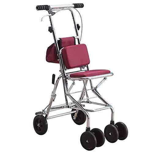 HYRL Walker Light Plegable Viejo Hombre Paseo Auxiliar Trolley, carros utilitarios con Ruedas Adecuado para el Uso de...