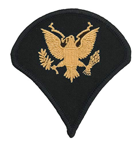 (US Army Blue Chevron, Large Specialist E-4)