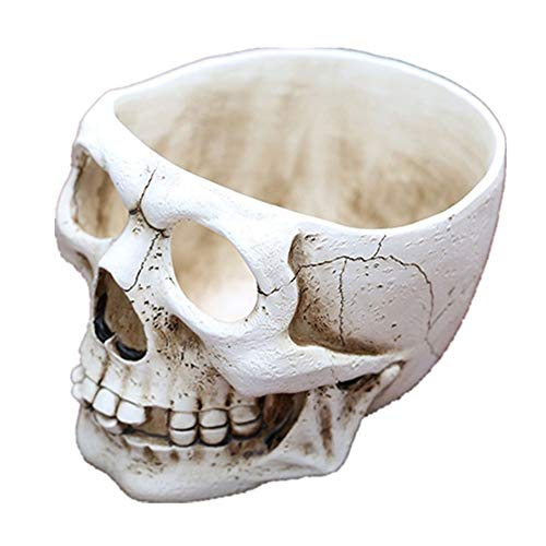 (Xinhuaya Retro Human Skull Head Flower Pot Planter Bed Box Container Replica Home Bar Decor (16.511.511cm, Style)