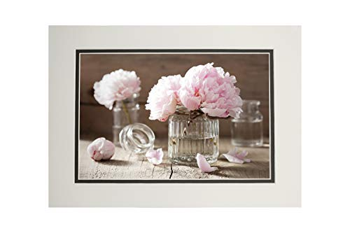 Pink Peony Flowers Bouquets In Vases Photography A-91883 (11x14 Double-Matted Art Print, Wall Decor Ready to Frame)