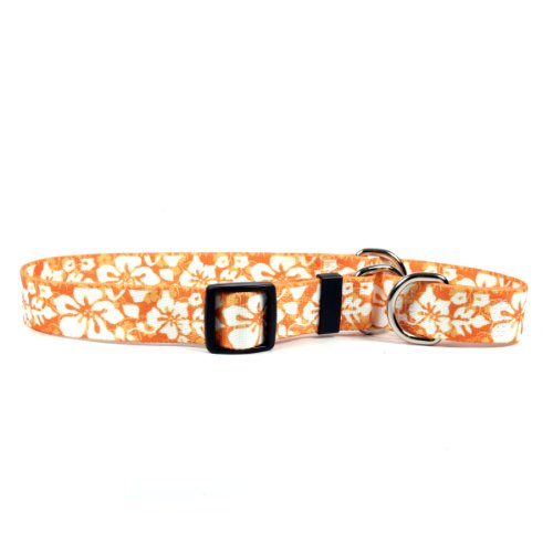 Dog Collar Island - Yellow Dog Design Island Floral Orange Martingale Dog Collar 3/4