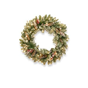 National Tree 24 Inch Dunhill Fir Wreath with 50 Clear Lights (DUF3-300-24W-1) 95