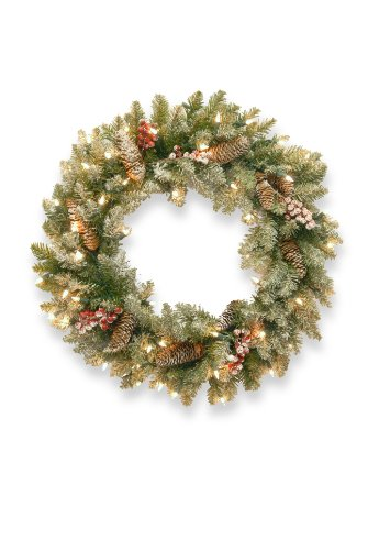 (National Tree 24 Inch Dunhill Fir Wreath with 50 Clear Lights (DUF3-300-24W-1) )