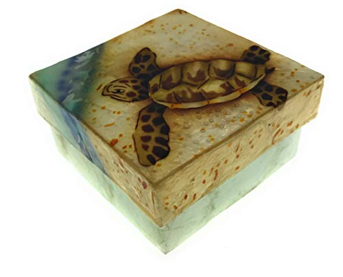 Kubla Crafts Baby Sea Turtle Capiz Shell Keepsake Box, 3 Inches -