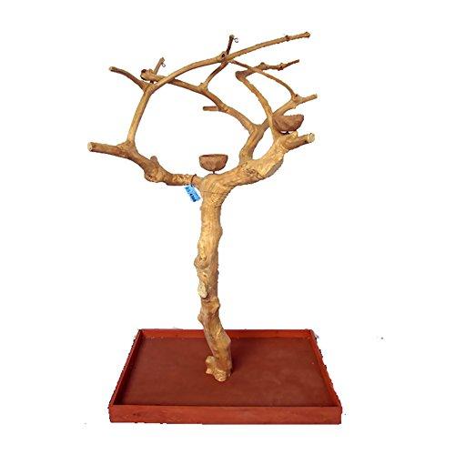 A&E CAGE COMPANY AE250S Java Wood Tree by A&E CAGE COMPANY