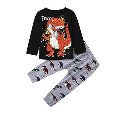 Oldeagle Baby Boys Girls Long Sleeve Cartoon Dinosaur Print Tops+Pants 2PCs Pajamas Clothing Set: Clothing