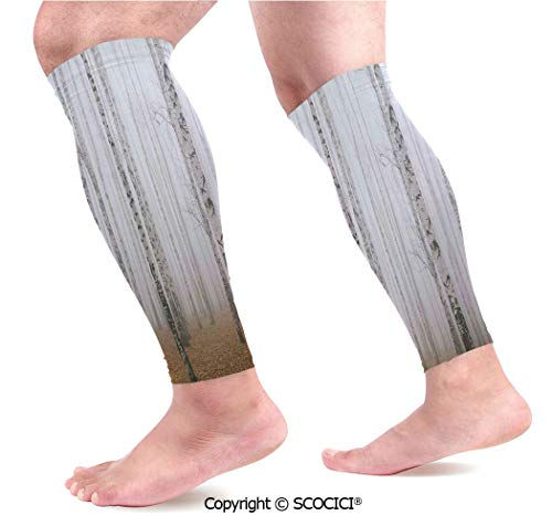 (Flexible Breathable Comfortable Leg Skin Protector Sleeve Morning Mist in Autumn Birch Grove Flora Calm Serene Simple Nature Picture Calf Compression Sleeve)