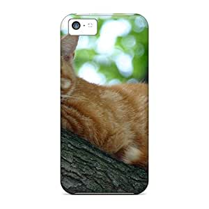 CaroleSignorile Cases Covers For Iphone 5c - Retailer Packaging Cat Up A Tree Protective Cases