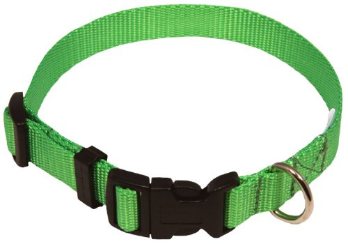 Tags Dog Petsmart (Country Brook Design Economy Nylon Dog Collars - Hot Lime Green - Extra Small)