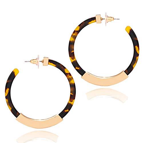 Lucite Earrings Pierced (XOCARTIGE Hoop Earrings Premium Acrylic Earrings for Women Bohemia Tortoiseshell Resin Dangle Earring for Girls (E Dark Brown))