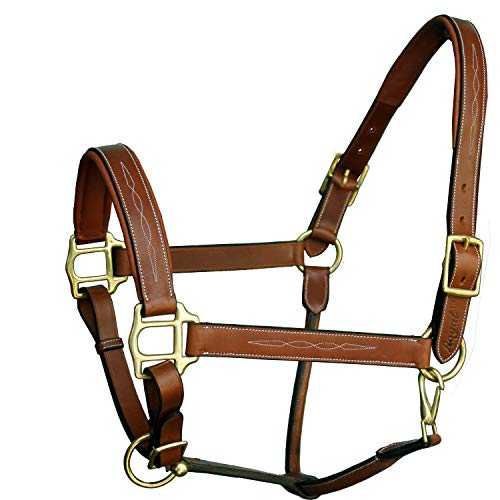 Exion Six Fancy Padded Halter and Brass Buckles | Equestrian Show Jumping Padded Halter | English Horse Riding Premium Tack | Conker | Over