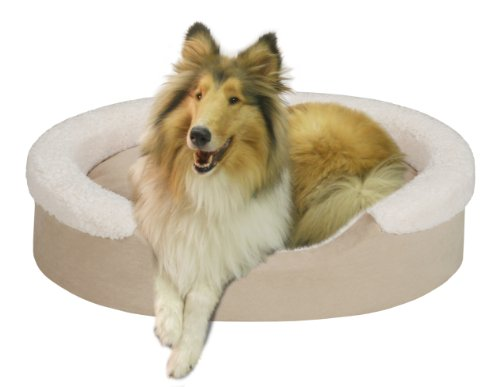 Soft Touch Cuff Oval Cuddler Tan 40×24 inches, My Pet Supplies