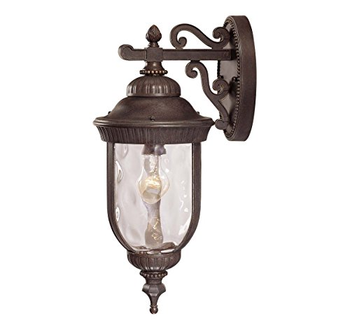 Savoy House 5-60321-40 Outdoor Sconce with Clear Hammered Shades, Walnut Patina (Walnut Patina Finish)