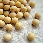 国産(北海道) とよまさり大豆 1kg