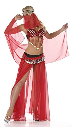 [Nom de Plume, Inc Sexy 6PC Bellydancer Costume Set Large Red] (Sexy Belly Dancer Costumes)