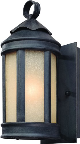 Troy Lighting Andersons Forge 11.5