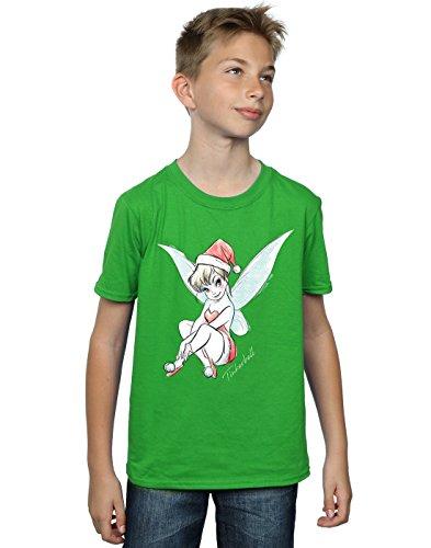 Disney Boys Tinkerbell Christmas Fairy T-Shirt 12-13 Years Irish (Disney Tinkerbell Fairy T-shirt)