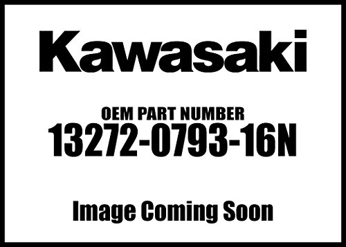 Kawasaki 2010 Mule 610 4X4 Realtree Apg Hd Camo Rh Carrier Plate 13272-0793-16N New Oem